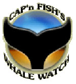 logo-captain-fish150