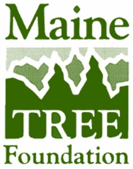 Maine Tree Foundation logo