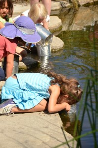 Pond explorations in Nature Adventure Camp