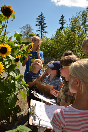 Garden Explorers campers record observations about flowers during a scavenger hunt