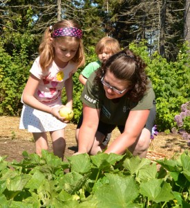 Garden Explorers harvest cucumbers with Camp Coordinator Karen Jones to make pickles.