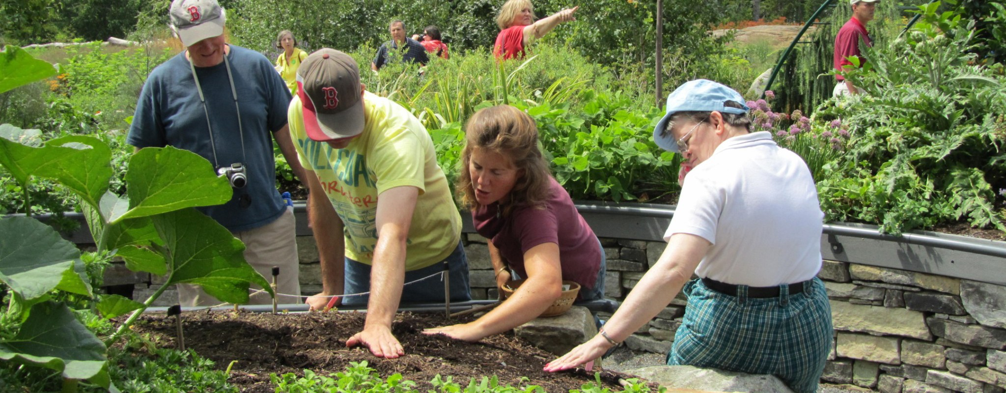 Therapeutic Horticulture at CMBG
