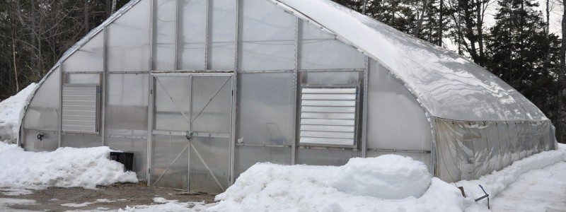 Greenhouse March 2015