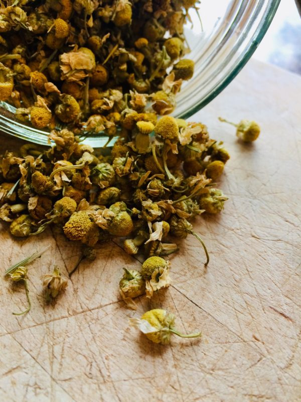 dried chamomile blossoms