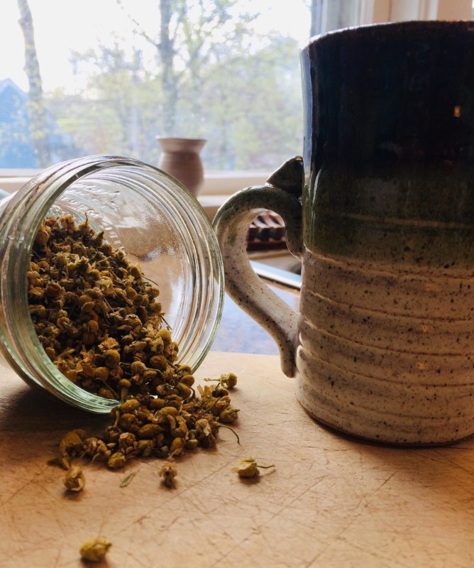 teacup and herbs