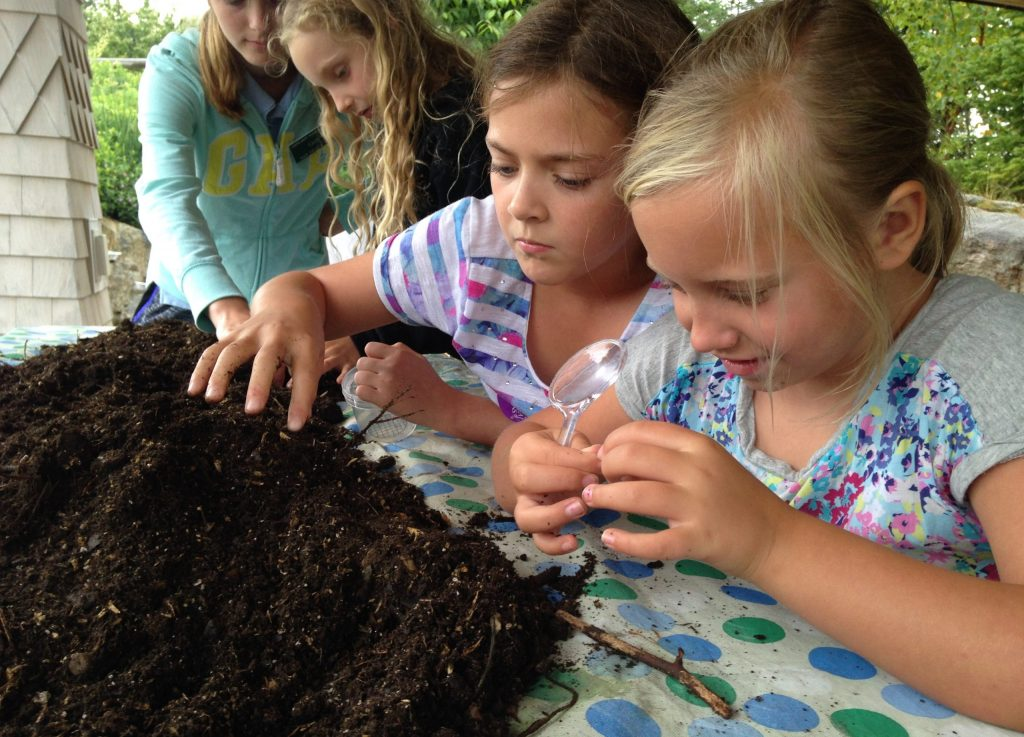 Girls digging through dirt, looking for worms and other decomposers in the soil.